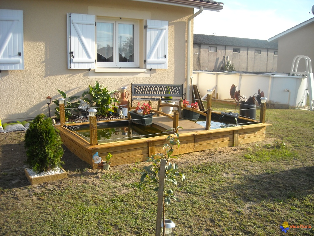 Photo bassin hors sol for Bassin de jardin algues vertes