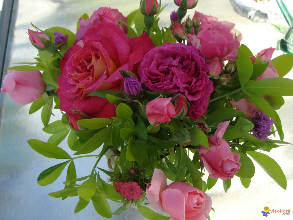 Photo bouquet de roses for Bouquet de rose