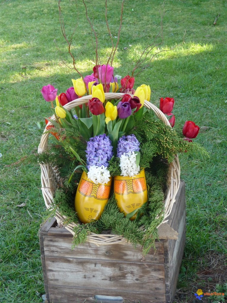 Photo bouquet de tulipes et jacinthes for Bouquet de tulipes