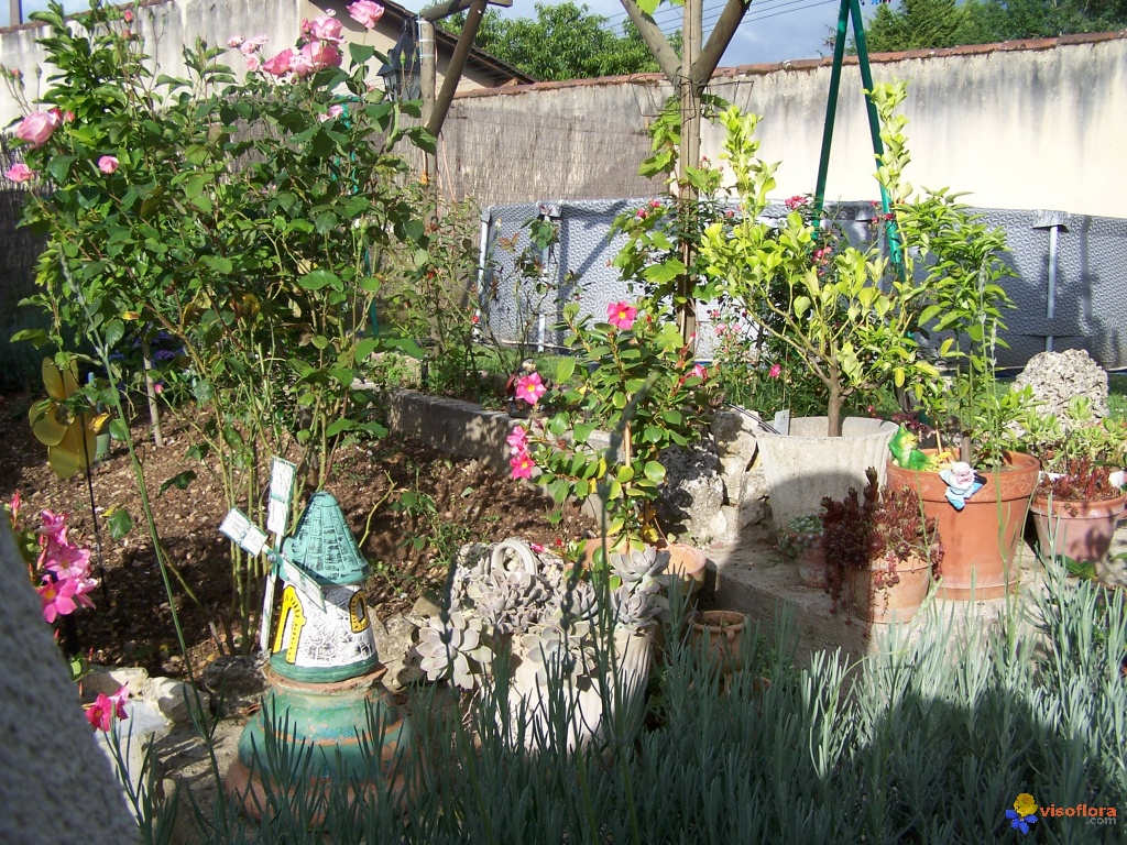 Photo decoration au jardin for Deco de jardin fait maison